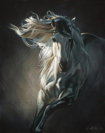 Heather Theurer - By Moonlight