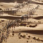 Erik Sampers - Marathon des Sables