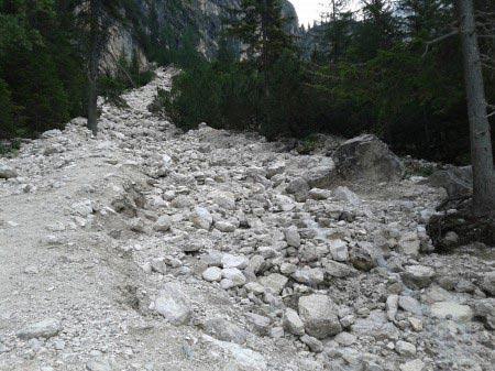 Sentiero di sassi che sale verso l'alto tra alberi