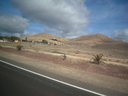 Strada con territorio deserto e ciuffi di cactus