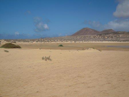 Terreno desertico con vulcani sullo sfondo