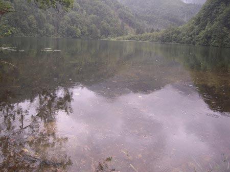 Austria - Acqua e monti del lago Krottensee