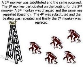 Esperimento delle scimmie di G. R. Stephenson 06