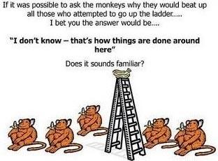 Esperimento delle scimmie di G. R. Stephenson 08