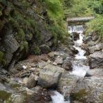 Valle dei Mulini - Torrente Pioverna tra la vegetazione