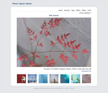 Tema WordPress Photo Biyori