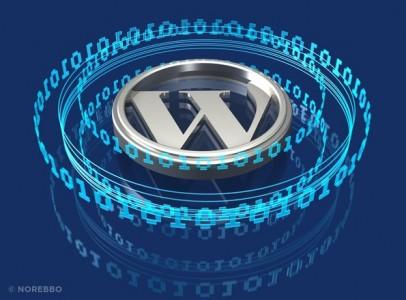 W di Worpress circondato da codice