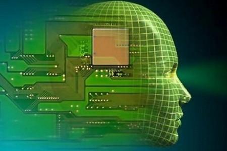 Cervello e chip